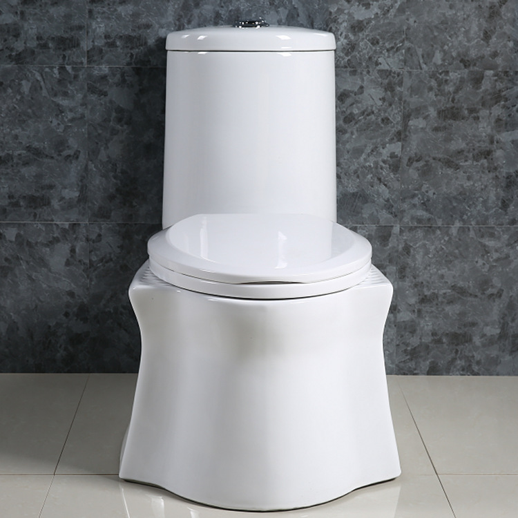 广东瓷工程家用两用马桶蹲坐两用坐便器蹲便器一体式蹲坑座蹲座